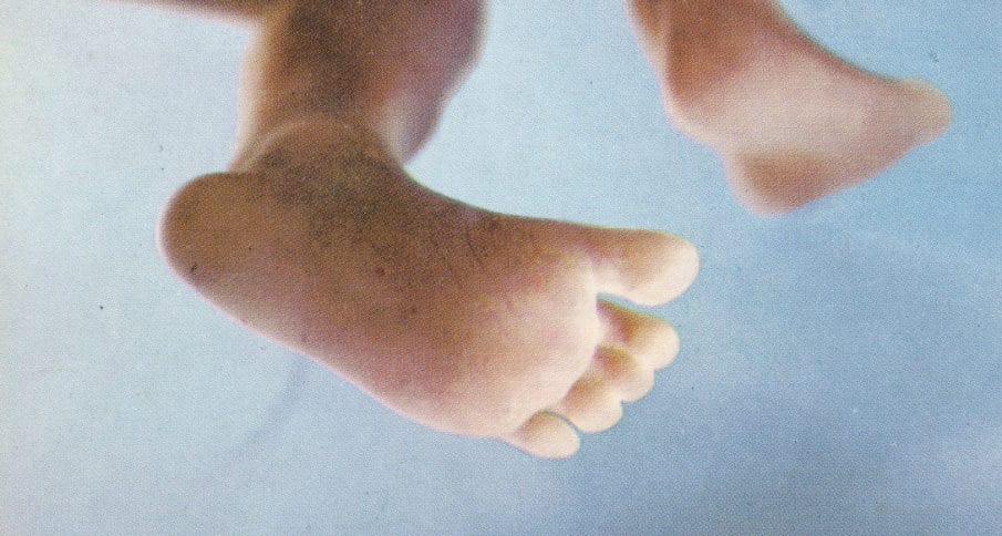 Pés do feto de 16 semanas