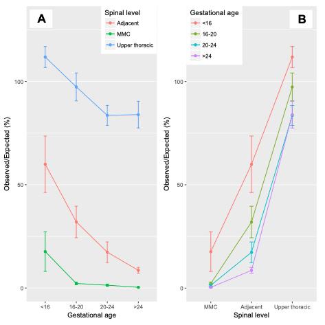 Razões O/E dos neurônios motores em função da idade gestacional